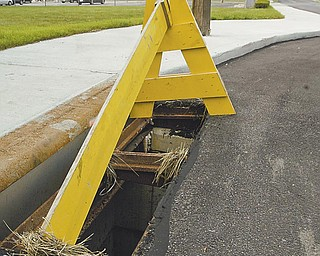 Since June 19, 30 sewer-grate covers similar to this one have been stolen in the downtown area. City workers are replacing them, but police are looking for the person or people who have been stealing them and attempting to sell them to scrap yards.
