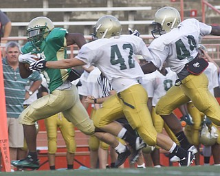 LISA-ANN ISHIHARA | THE VINDICATOR...Ursuline Jesse Curry #5 clears past the Canton GlenOak Eagles.. as he makes his way to the end zone for a touchdown,