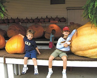 Tyler Kadivar, left, and Hailey Kadivar of Bradenton, Fla., see how they measure up next to giant pumpkins. They are the grandchildren of Bob and Joan Stroh of Poland.