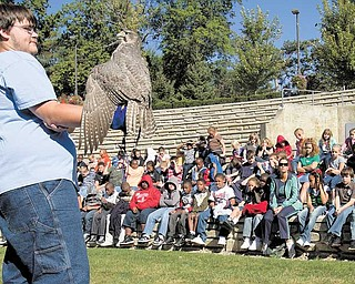 Cameron Merritt, 16, of Birds in Flight Sanctuary of Howland holds a gerfalcon for fourth-graders from two Warren public schools Tuesday during the annual Community Waters Festival in Perkins Park. The sanctuary nurses about 900 injured birds back to health per year from an 11-county area.