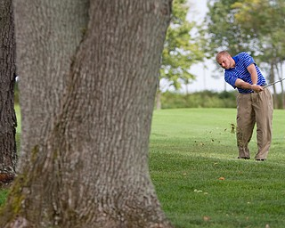 Geoffrey Hauschild|The Vindicator Having a severe allergy to bee stings, Joshua Zarlenga, of Youngstown CC, is allowed to move his ball away from trees containing an active bee hive while on the 18th hole at The Lake Club during the open division of the Greatest Golfer in the Valley tourney.