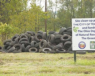 More than 30,000 tires are piled high in the vacant lot on Wilson Avenue.