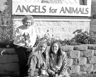 Making preparations for Angels for Animals' 5th annual Holiday Wine Taste from 7-10 p.m. Saturday are, from left to right, Alice Marchione, volunteer and board member; Lisa Kishok, office manager; and Diane Less, founder of Angels. Also pictured is the adoptable Lab mix, Hailey. For more information call 330-549-1111. The wine taste will take place at Andrews Hall at Angels, 4750 West South Range Rd. Canfield, OH 44406.