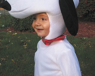 How could a face as sweet as that ever be in the doghouse? Jim and Casey Putko of Boardman sent in this photo of their 15-month-old son Jimmy, who is dressed as Snoopy.