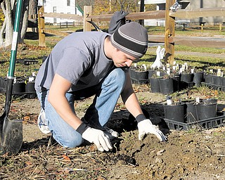 Adam Planty of Austintown participated in a Community Clean Up Day on Youngstown's South Side. Planty planted flowers Saturday, saying he wanted to help beautify the area.