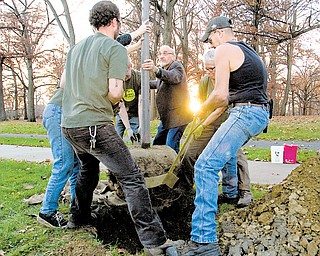 Members of Treez Please, including Ralph Malmer of Austintown, center, plant a New Harmony elm tree on Elm Street in the devil strip near Wick Park on Saturday.