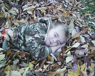Hey, sometimes gathering all of those leaves together can really wear you out! Here, Grant Taylor of Youngstown catches up on a little rest after playing in the leaves in the yard. Photo submitted by Chip Taylor.