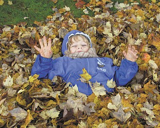 Jeremy Lodwick of Youngstown is playing in the leaves at his Great-grandma Vargo's house in Hubbard.