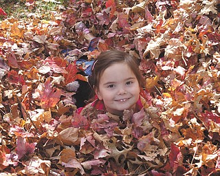 4-year-old daughter Carley Johnston of Poland spent a beautiful fall day playing in the leaves. Photo taken in October by her mom, Cara Johnston.
