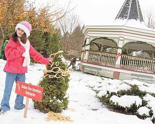 Chloe Khoury, 5, of Boardman, adds an ornament to a tree representing her Kindergarten class at Stadium Drive Elementary during the 14th Annual Boardman Community Christmas at Boardman Township Park on Sunday afternoon.