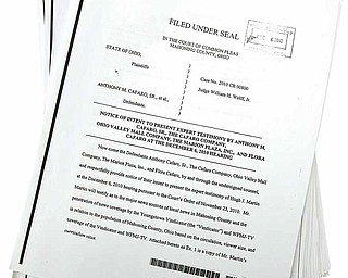 Hundreds of pages of documents in the Oakhill Renaissance Place criminal case were made public Tuesday, Dec. 7, 2010.