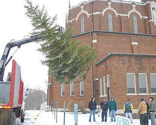 An 18-foot blue spruce is hoisted by Mashburn Tree Service after it was cut down at Southern Boulevard and Lucius Avenue in Youngstown. The tree was on property given to St. Dominic Church, which gave the tree to St. Patrick Church.
