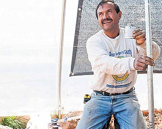 You learn every day, says Jose Castillo, as he installs a water pipe at the Edmonston, Maryland Urban Farm. Castillo is a beekeeper but says he has also been involved in everything from building compost bins to watering plants.