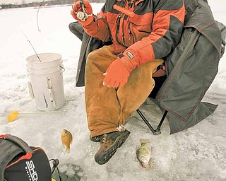 Ice Fishing is cool - delicate and light weight rods and reels are used as Jim Bakalar of Poland pulls in a crappie from Mosquito Lake.