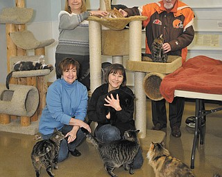 The Vindicator | Mark Stahl: Helping animals at Second Chance Animal Rescue are, from left to right, in front, Lori Osborn and Deb Alexander, and in back, Debbie Morgan and Roy Reese. They are among the volunteers preparing for the shelter's 11th annual Night at the Races, which will take place Saturday at St. Michael Church hall in Canfield. The event is a major fundraiser for Second Chance.