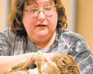 Sassy Pickard of Youngstown demonstrates bunny massage as a way to relax and bond with ones pet rabbit. Pickard is the head of the Frisky Ferrets, Fuzzies and Feathered Friends Rescue and Sanctuary or F5RS and in observance of National Adopt a Rabbit Month the group held wellness checks and classes throughout Saturday morning and afternoon at Petco in Boardman.