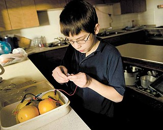 A power source that includes a zinc nail, a copper penny and two oranges and two lemons that generated enough power to light a low-energy diode is the project that Walter Woods, 10, will present at the upcoming science fair at Youngstown State University. The McGuffey School fifth-grader is shown here during a session of the after-school science program at West Side Community Center.