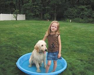 Lynnette Holland of Girard submitted this photo of her goldendoodle Jaxon, who is sharing his pool with his cousin Marissa Wilson.