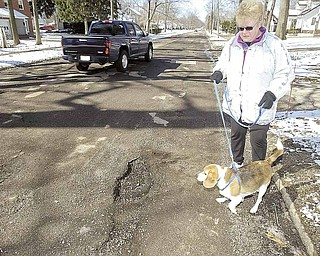 A woman walks her dog on Lyon Boulevard. The Poland Township road is riddled with potholes, and the Mahoning County Engineer's Office plans to improve the road this summer.