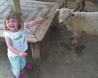 It doesn't matter to Alexis Kemble if March ever goes out like a lamb; she just likes to have fun at the petting zoo! Alexis is the granddaughter of Gary and Margie Kemble of Canfield, who submitted the photo.