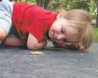 Louis Gordon was 2 when this picture of him getting up close with a dagger moth caterpillar was taken last year. He lives in Canfield with his parents, Matthew and Joni Gordon, and his sister, Madelyn.
