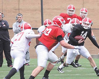 YSU freshman QB Patrick Angle (14) will work with the second teamers in hopes of besting the starters in Saturday's Red-White game at Stambaugh Stadium.