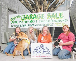 """Some of the """"angels"""" of Angels For Animals are all smiles as they prepare for the organization's annual garage sale on April 29, April 30 and May 1 at the Canfield Fairgrounds, 7265 Columbiana-Canfield Road, Canfield, From left are Diane Less, co-founder; Lisa Kishok, volunteer manager; Mary Ann Karas, office manager; Kate McDermott, general manager."""