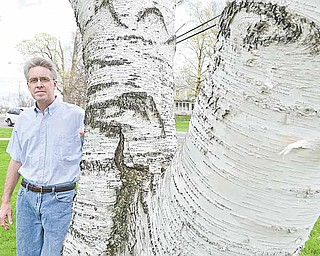 Mark Eddy, chairman of the Parks, Recreation and Cemetery Board for the city of Canfield, stands next to a birch tree on the city's green. Canfield has been a certified Tree City USA for the past 30 years.