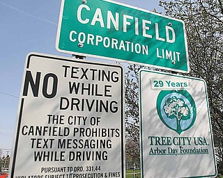 The leaves of neighboring trees cast their shadows on this recently outdated sign boasting of Canfield's status as a Tree City USA.