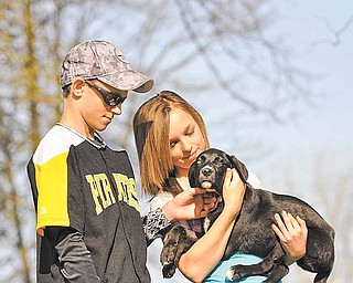 """Jordan Troy and his sister Shannon show their affection for their rescued 3-month-old puppy """"Duke"""".  With help from their mom and the rescue group 'For the Dogs', Duke was able to receive the care he needed.  The Troy's have now welcomed Duke into their family.  The Troy's were at the Mahoning County Dog Pound on Saturday where they were volunteering to walk many of the dogs that were currently at the pound."""