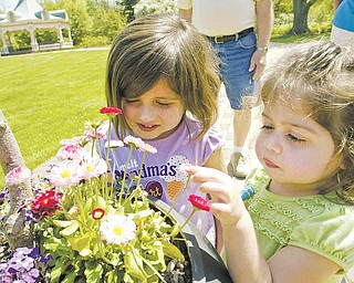 Myleigh Broll, 3, left, and her sister Brooklyn, 2, check out the flowers at Fellows Riverside Gardens.