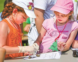 Second graders Payton Blackburn and Maggie Musser, both 8, look for bone fragments inside a sterilized owl pellet. They were among the Springfield Elementary students having a field day Tuesday learning about science.