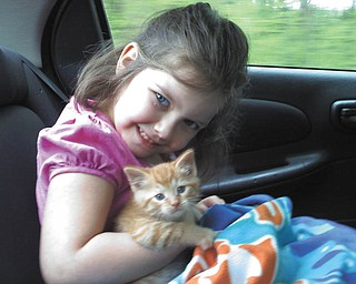 5-year-old Mikayla Upright of Youngstown shared this picture of her kitty, Snickers, who is 7 weeks old and was adopted just a little over 3 weeks ago.