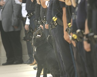 ROBERT K. YOSAY | THE VINDICATOR..Area officers and K-9's lined up and saluted as Chico's  cremains were brought to the memorial service - Chico - New Castle Police K-9 Officer was honored today with a memorial service and  a memorial drive thru the city. Chico died Saturday after being left in a police car for almost three hours. The handler -officer- who has not been named is suspended without pay...-30-