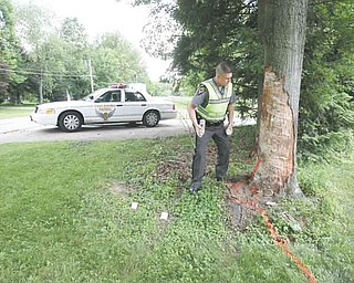 Accident investigator Ryan Fox marks a tree off Leffingwell Road that was sideswiped in a fatal car accident that killed the passenger, 17-year-old Kevin Kolesar of Canfield.