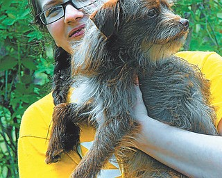 Mary Ann O'Neil sent this picture of Anna Lefoer, who attends Canfield Schools, and her dog, Hershey.