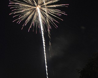 Image of a firework from the Independence Day fireworks in Youngstown. Display by the City of Youngstown and Colonial Fireworks. Image by Katie Libecco/The Vindicator.