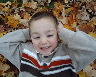 "Patrick Dell of Austintown relaxes on his ""bed"" of leaves. Photo submitted by his mother, Tricia Dell."