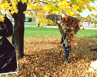 Lana Vannauker of Canfield sent in this photo of Leanna Hartsourgh playing in the leaves Ellsworth.