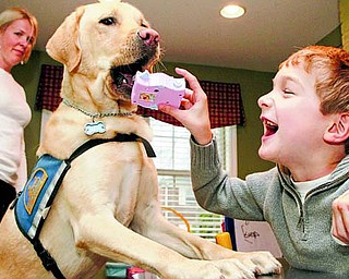 Page Murphy, of Mariemont, looks on as Crisp the dog picks up a toy for Mason Murphy, 8, at their home in Mariemont, Ohio. Crisp, a Labrador-golden mix, assists Mason who has cerebral palsy.