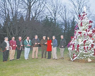 Boardman Park's first Christmas tree is lit during the township's annual holiday light-display event