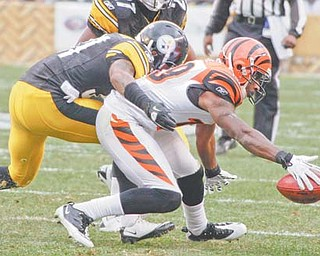 Cincinnati Bengals' Brandon Tate, right, fumbles a kickoff as Pittsburgh Steelers' Curtis Brown pursues in the second quarter of a game in Pittsburgh on Sunday. The Steelers recovered the fumble.