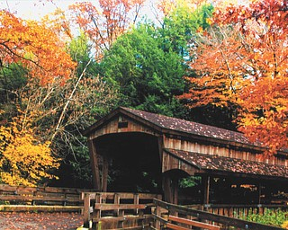 Mill Creek Park in the fall of 2011. Taken by Lana Van Auker of Canfield.