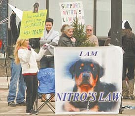 """Demonstrators rally in downtown Youngstown in support of House Bill 108, also called """"Nitro's Law."""" The rally Wednesday came at the same time Steven Croley of Austintown was in court for a probation-violation hearing."""