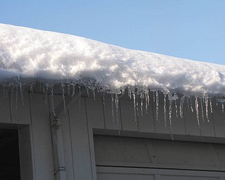 Autumn Feo took this shot of icicles hanging from the gutter of her family's garage.