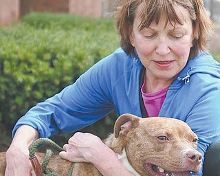 Maggie Koval of Youngstown cuddles with Neptune, one of the dogs at the Mahoning County Dog Pound. Koval is one of the volunteers who walk the pound's pups, providing exercise and fresh air for the animals.