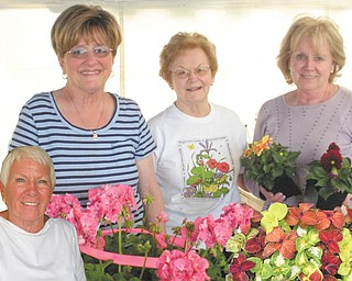 """Northeast Ohio Adoption Services will have its annual spring flower sale, """"Eight  Bloomin' Days Only,"""" from 10 a.m. to 6 p.m. each day Wednesday through May 16 at  Hunter's Square Plaza, 8700 E. Market St., Howland. Co-chairwomen, from left, Gere Weller of Liberty and Janet Weller of Canfield, are organizing the event, which will be staffed by community volunteers such as Carolyn Lewis and Marie Lewis, right, both of Howland. There will be Mother's Day gift baskets, hanging baskets, herbs and  perennials. Requests for a certain variety or color can be placed before May 13 at  330-856-5582, ext. 110; volunteers to help with watering or arranging also can call. For  information about NOAS call the above number at ext. 123 or visit www.noas.com."""