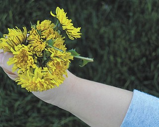 This photo was submitted by Rachel Camuso of Canfield, who says her 3-year-old daughter, Eva, had just picked a bouquet for her. She says that Eva and her twin brother, Georgie, are at that age when everything is beautiful, even dandelions.