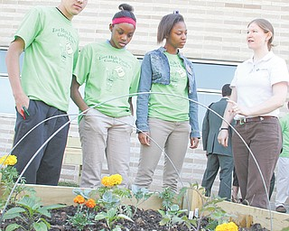 East High School students, from left, Angel Cosme, Breona Taylor and LeA'Jaha Day listen as Meagan Tehua of Goodness Grows talks about what's included in one of the beds in the East High School Panthers Garden, a garden in the courtyard of East High School. The project was a joint effort among the school, Northeast Homeowners Association and Concerned Citizens Association and several partner individuals and organizations.