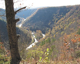 """A view of the """"Grand Canyon of the East,"""" as it is fondly called, near Wellsboro, Pa. Photo taken during a horseback ride by Lisa and Dominic Pannunzio."""